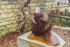 加拿大的标志-海狸的一个古铜色雕象在弗格斯加拿大的公园站立  库存图片