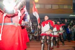 加拿大的骑士 库存照片