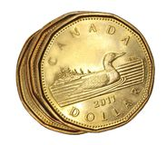 加拿大硬币美元一 库存照片