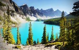 加拿大罗基斯 库存照片