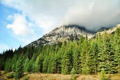 加拿大自然-亚伯大 免版税图库摄影