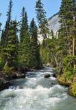 加拿大自然-卡纳纳斯基斯,山小河,瀑布 库存照片