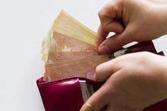 加拿大钱包 库存图片