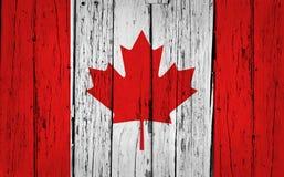 加拿大难看的东西背景 免版税图库摄影