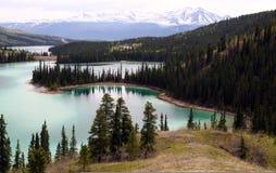 加拿大鲜绿色湖育空 库存图片