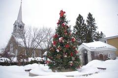 加拿大,装饰的冷杉在魁北克的省的一个村庄 免版税库存图片