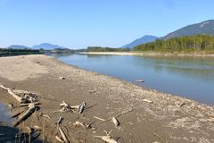 加拿大` s雨林和天旱 免版税图库摄影