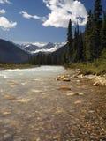 加拿大kootenay国家公园 库存照片
