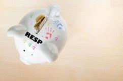 加拿大RESP储款概念 免版税图库摄影