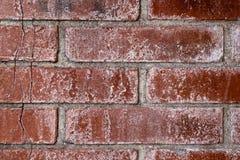 更加接近的砖墙纹理 免版税库存图片