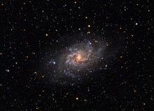 更加杂乱的33 Triangulum星系 免版税库存照片