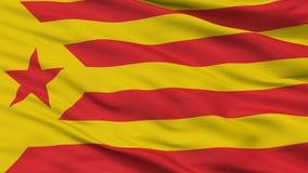 加泰罗尼亚的民族主义旗子特写镜头视图 皇族释放例证
