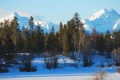 加盖的山雪 库存图片
