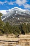 加盖的峰顶雪 免版税库存照片