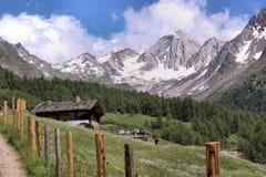 加盖的雪山顶 免版税库存照片