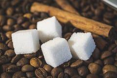加糖立方体有咖啡豆食物摘要背景和两根肉桂条 免版税库存图片