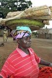 加纳的妇女运载的木柴画象  免版税图库摄影