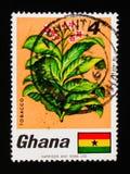 加纳邮票显示烟草、动物和植物群serie,大约1968年 库存图片