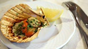 加调料烘烤焦干酪用柠檬和荷兰芹在意大利海鲜restaur 库存图片