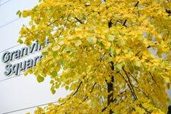 加连威老广场,一个突出的塔在温哥华,加拿大 库存图片