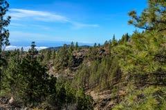 加那利群岛自然公园西班牙 免版税库存照片