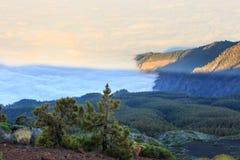 加那利群岛西班牙tenerife 图库摄影