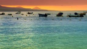加那利群岛tenerife 库存图片