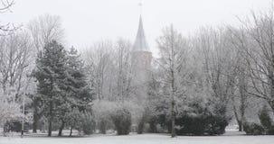 加里宁格勒大教堂  股票录像