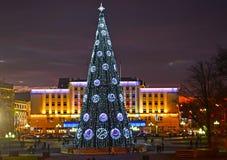 加里宁格勒,俄国 一棵新年树在胜利广场的晚上 库存照片