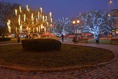 加里宁格勒,俄国 光亮的装饰树的看法在正方形的在微明下 库存图片