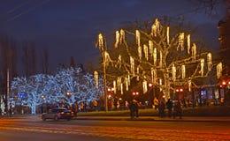 加里宁格勒,俄罗斯- 2018年1月02日:与装饰il的树 免版税库存图片
