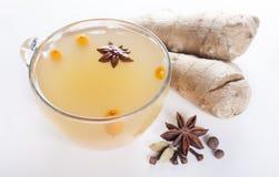 加香料的茶用海鼠李和姜和香料在白色 免版税库存图片
