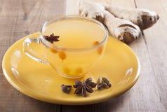 加香料的茶用海鼠李和姜和香料 库存图片