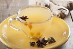 加香料的茶用海鼠李和姜 库存照片