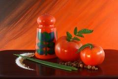 加香料蕃茄 库存照片
