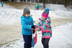 更加年轻的入学年龄的男孩和女孩在冬天停放关于雪橇的倾斜 免版税图库摄影