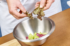 加莴苣的手离开入碗与沙拉,特写镜头 库存照片