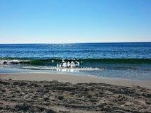 滚动在海滩的波浪 免版税库存图片