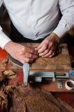 滚动手工制造雪茄parejos的Torcedor 免版税库存照片