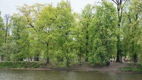 移动沿小船的,捷克伏尔塔瓦河河的布拉格都市风景时间间隔视图 影视素材
