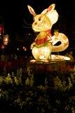 动物中国灯笼黄道带 库存照片