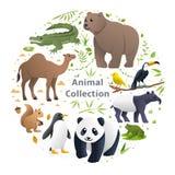 动物传染媒介集合 库存例证