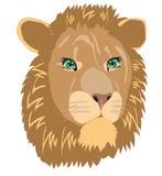 动物例证狮子向量 免版税图库摄影
