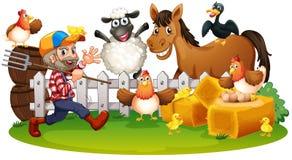 动物农场横向许多sheeeps夏天 皇族释放例证