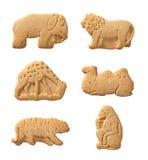 动物剪报薄脆饼干路径 库存照片