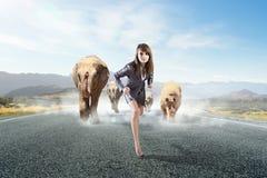 动物力量和stength 混合画法 免版税图库摄影