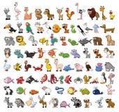 动物动画片逗人喜爱的集 免版税库存照片