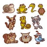 动物动画片集 免版税库存图片