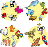 动物区系 库存图片