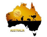 动物区系澳大利亚 库存照片